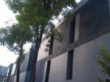หอพัก The Liv Apartment ห้องเช่ารายเดือน ซอย ราชวิถี 20